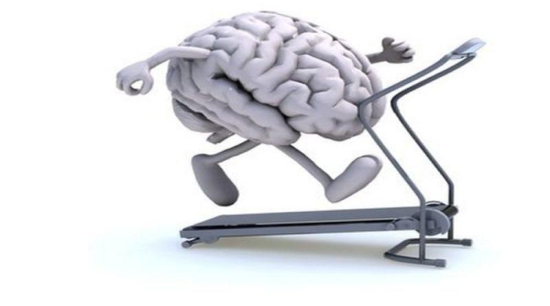 Мозг и упражнения