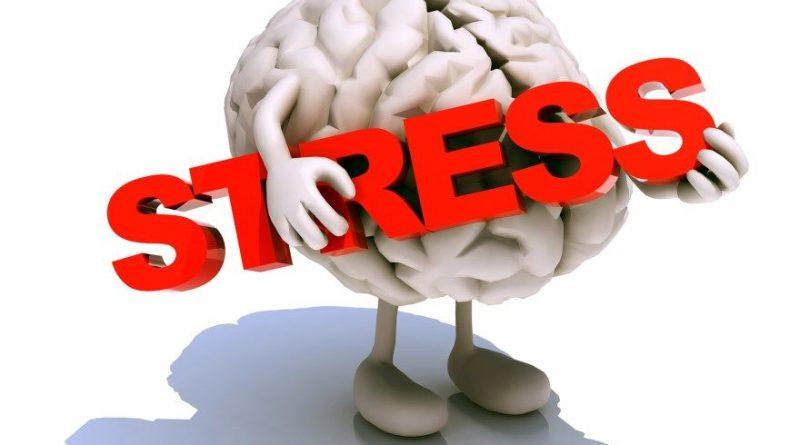 Как хронический стресс меняет мозг, и что вы можете сделать, чтобы обратить вспять ущерб