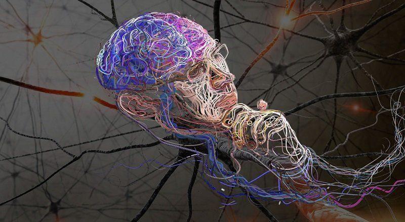 То, что вы видите сейчас, это прошлое, поэтому ваш мозг предсказывает настоящее