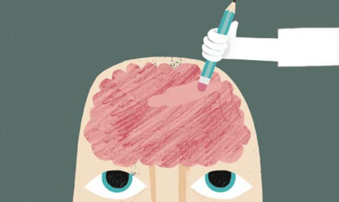 Как мозг забывает?