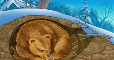 Зимняя спяка