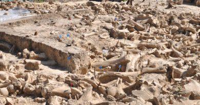 25 000-летнее сооружение, построенное из костей 60 мамонтов