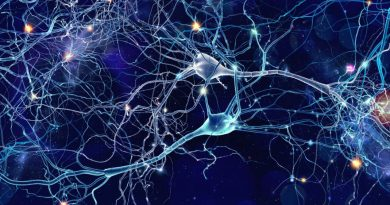 Ученые обнаружили новый вид сигнала в мозге человека