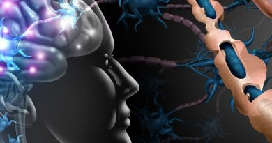 миелинизация нейронов