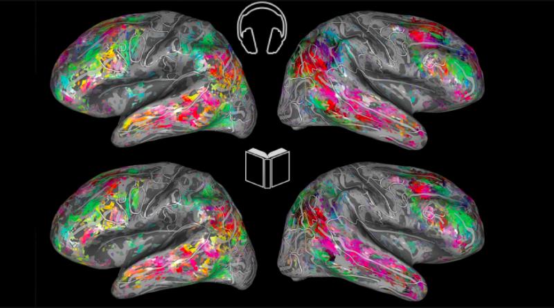Мозг интерпретирует разговорный и письменный язык одинаково