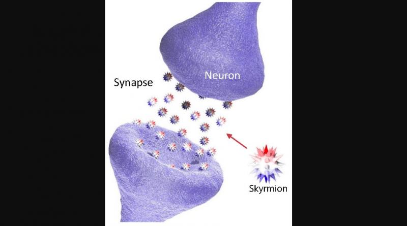 Использование скирмионов для создания искусственных синапсов для нейроморфных вычислений