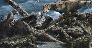 «Самое опасное» место на протяжении всей истории Земли, раскрытое палеонтологами