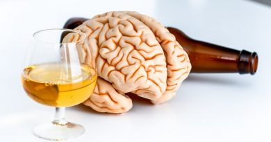 Найдена область мозга, которая регулируют количество выпитого алкоголя