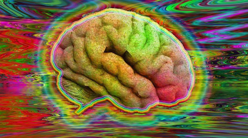 Структура вашего мозга может определить, какой опыт вы получите от психоделиков