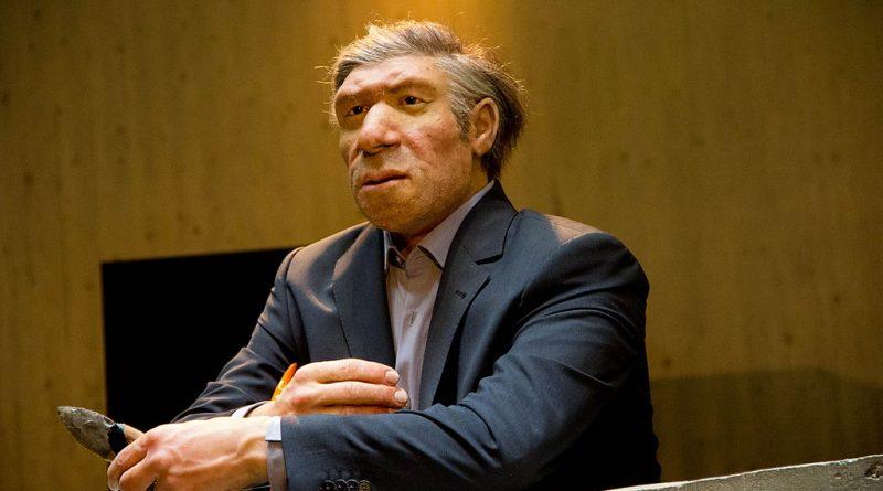 Нашлась пряжа, которую неандертальцы использовали 40 тысяч лет назад