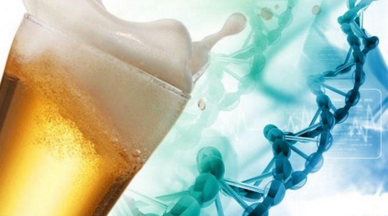 Как генетика влияет на пьянство
