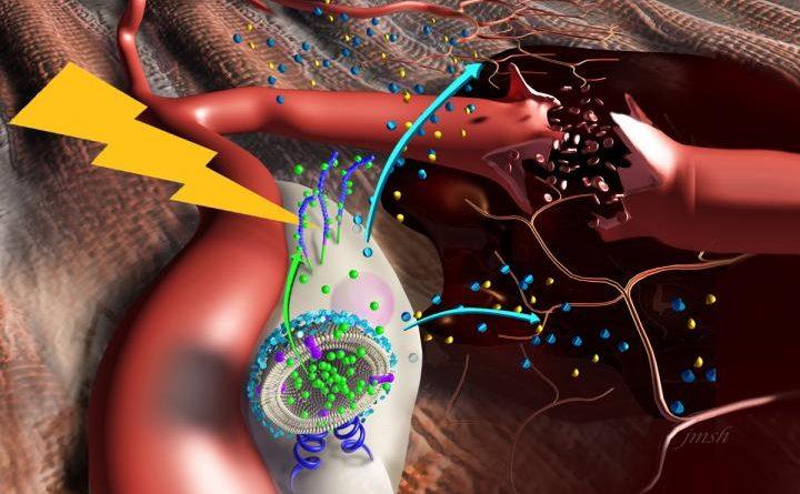 Наностимуляторы стимулируют стволовые клетки для восстановления мышц