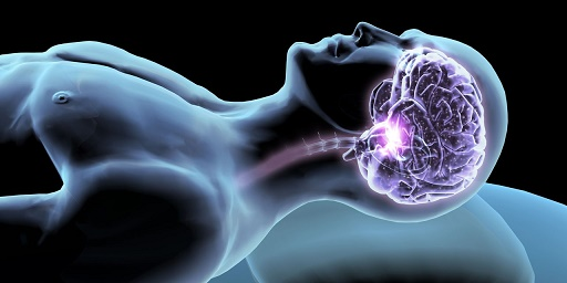 Наш мозг воспроизводит новые воспоминания, когда спит