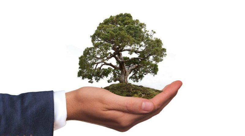 Люди склонны (ошибочно) переоценивать экологичность своего личного образа жизни