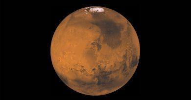 Этим летом Китай и ОАЭ запустят свои марсианские миссии