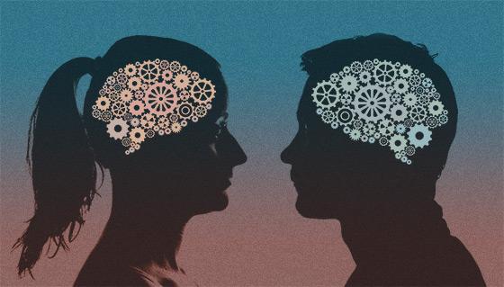 Различные типы клеток обнаружены в мужском и женском мозге мыши