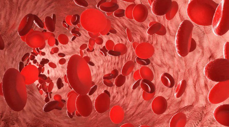 Ученые создали синтетические эритроциты, имитирующие природные свойства и некоторые дополнительные функции