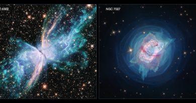 Хаббл наблюдает за двумя молодыми планетарными туманностями: NGC 6302 и NGC 7027