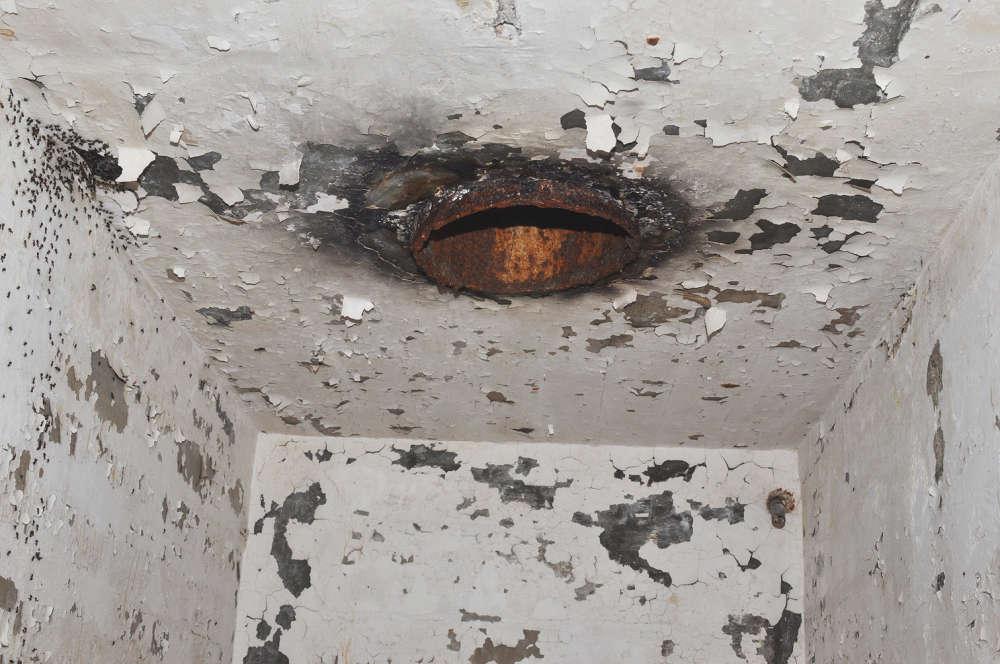 В верхней части слева показаны муравьи, которые не могли двигаться вдоль потолка и, следовательно, не могли достичь выхода в вентиляционной трубе.