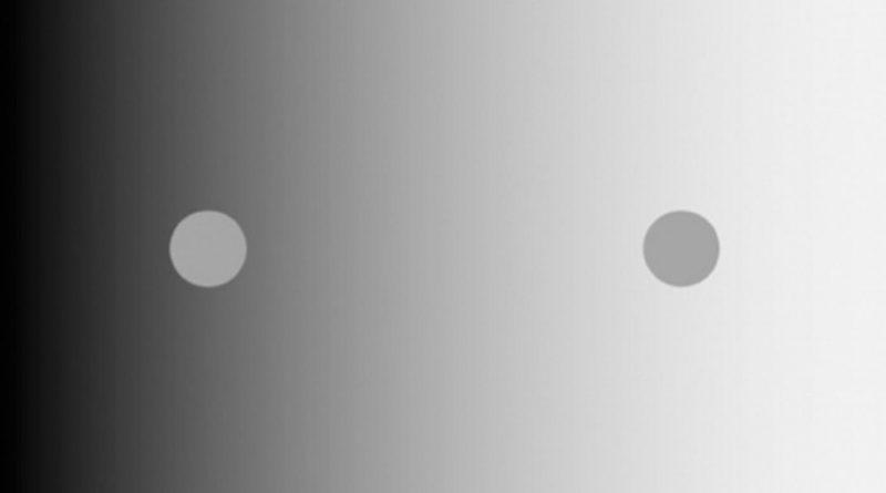 Исследование показывает, как происходит восприятие этой классической оптической иллюзии