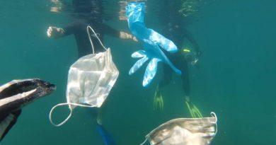 Новая экологическая проблема: маски для лица и латексные перчатки