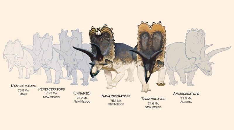 Два новых вида из Нью-Мексико помогают восполнить пробел в эволюции рогатых динозавров