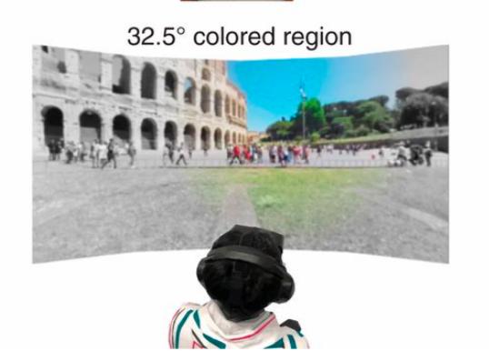 Люди осознают удивительно ограниченный цвет в их периферийном зрении
