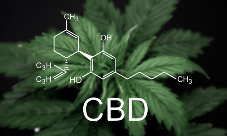 cbd наркология