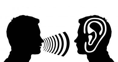 Наши уши фокусируют внимание на звуке с помощью движений