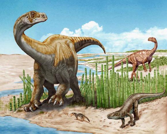 Schleitheimia schutzi (слева) и платеозавр (справа).