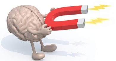 Магнит мозг
