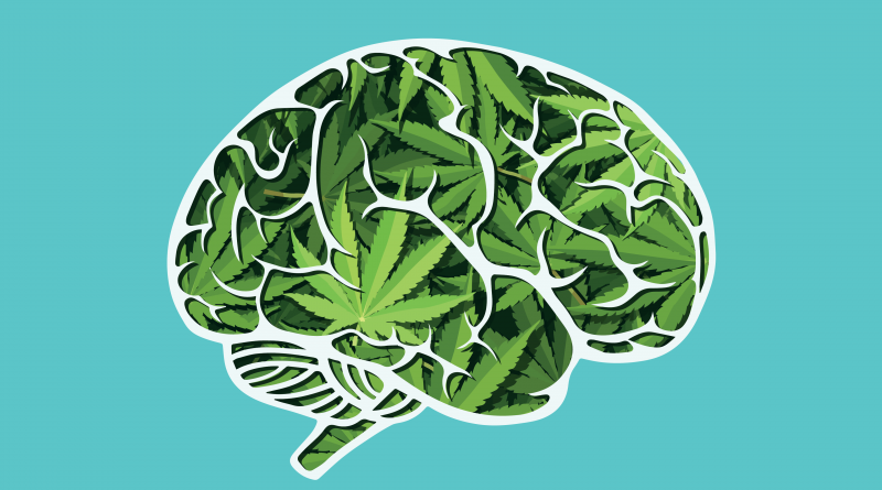 Мозг марихуана