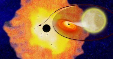 Центр Млечного Пути окружает рой из черных дыр