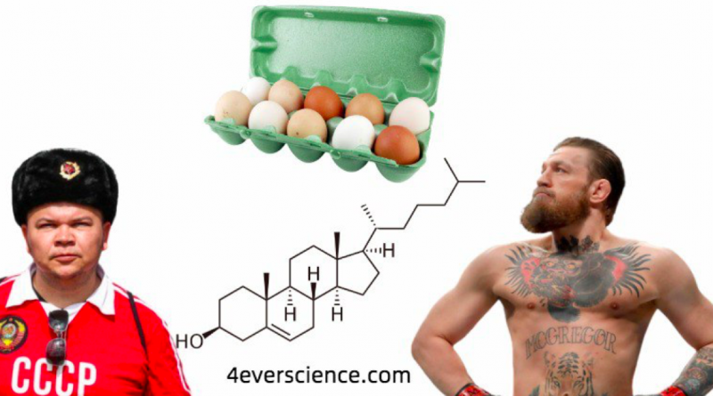 Ирландцев просят не беспокоиться, СССР, холестерин и яйца