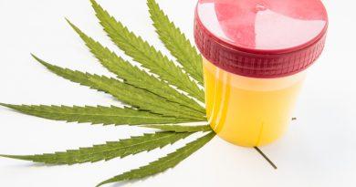 тест на марихуану