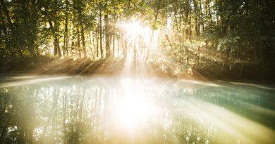 фото солнечного света