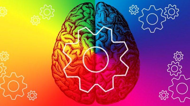 мозг цвета